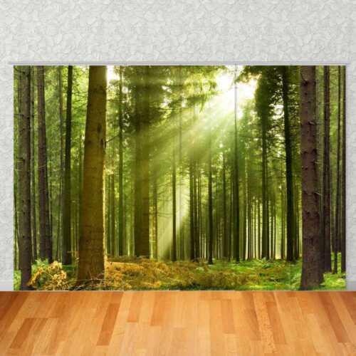 """Barre rideau motif /""""Forêt noire/"""" Surfaces Rideau Digital Pression Image Photo"""
