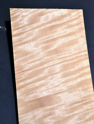 Olive Ash Raw Wood Veneer Strips 3.5 x 21 inches 1//42nd thick    F6773-47