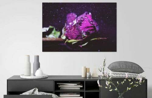 blurbubblescloseupHOME BEAUTIFUL WALL DECOR Art Canvas choose your size