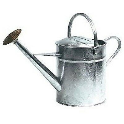 QUALITY FS HEAVY DUTY  2 GALLON GALVANISED METAL WATERING CAN + BRASS ROSE
