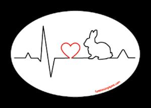 Bunny Heartbeat Love Euro Magnet