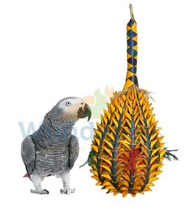 WOVEN-WONDERS-LARGE-FORAGING-PINEAPPLE-AFRICAN-GREY-BIRD-PARROT-CAGE-TOY-22328
