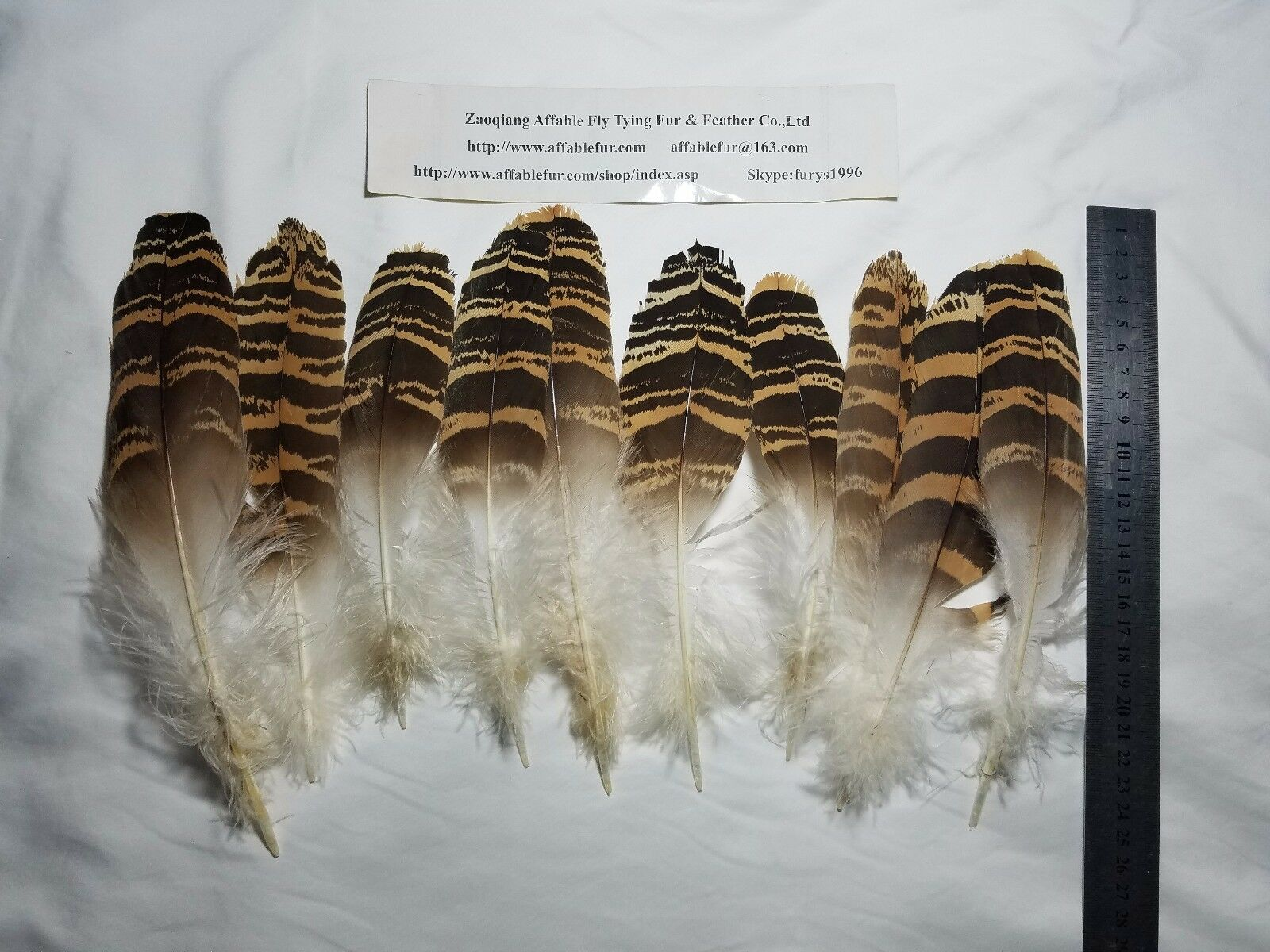 10 Pieces Natural Rare Vintage Bustard Feather  For Fly Tying  free delivery and returns