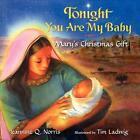 Tonight You Are My Baby Board Book: Mary's Christmas Gift von Jeannine Q. Norris (2010, Gebundene Ausgabe)