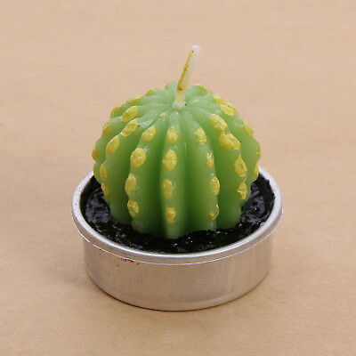 Smokeless Tea Light Wax Candle Paraffin Non-spill Bonsai Candle Cactus Grape