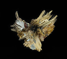 4.3cm GOLDEN RUTILE Star with HEMATITE from Novo Horizonte, Brazil 33876