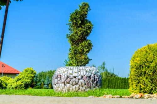 Gabionentopf Pflanzgabione Gartenteich Steinkorb Rund Blumentopf Hohe Qualit