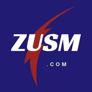 ZUSM-com-4-Letter-LLLL-Short-Brandable-Pronounceable-Domain-Name-LLLL-com