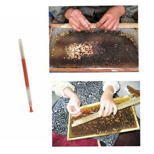 10 x Imkerei Moving Pfropfen Shift werkzeug Bienenstock Königin Larve Zucht Kit