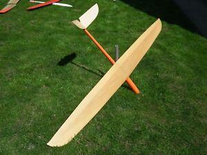 RC-Glider-IGI-2-2M-blejzyk