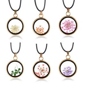 1PC-Runde-Glas-Charme-Anhaenger-Echt-getrocknete-gepresste-Blumen-Halskette-Glueck