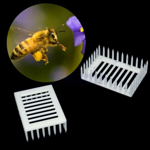 6x Bienenzucht Königin Biene Aufzucht Käfige Isolierhalter Fänger Nadel DL