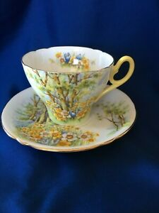 SHELLEY-DAFFODIL-TIME-CUP-SAUCER-13370-gorgeous-yellow-flowers-birch-trees