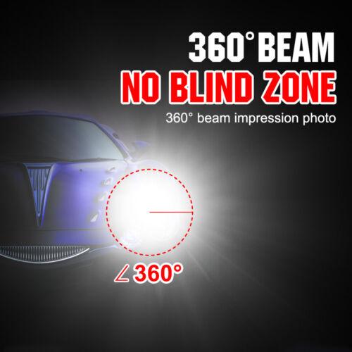 2X  D1S Xenon HID Headlight Replacement bulbs 6000K 4300K 1000K 12000K 35W lamp