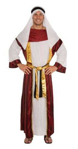 Mens Fancy Dress Desert Prince Costume Arabian Prince Bollywood 2 Sizes