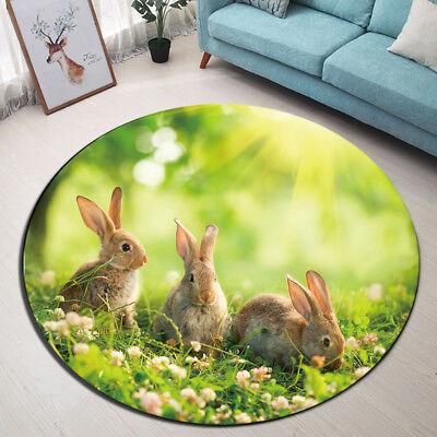 Kitchen Sunlight Easter Rabbit Round Carpet Floor Non Slip Room Bath Door Mat Ebay