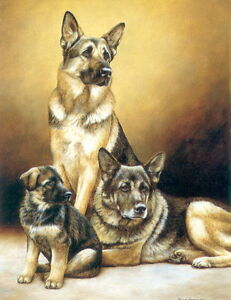 Nigel-Hemming-GENERATIONS-GERMAN-SHEPHERD-DOGS-GSD-GSDs-Family-Print-Art-Puppy