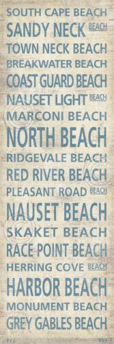 Cape Cod Beach Towns II by Sparx Studio Art Print Coastal Ocean Poster 38x14
