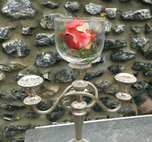 Rosenschale-Glas-Aufsatz-fuer-Kerzenleuchter-Teelicht-Windlicht-Glocke-rosebowl