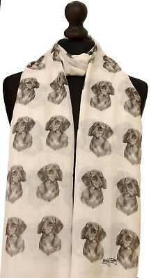 scarf with Rough Collie dog on womens fashion gift shawl wrap mike sibley art