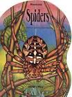 Spiders by Arthur John L'Hommedieu (Board book, 1997)