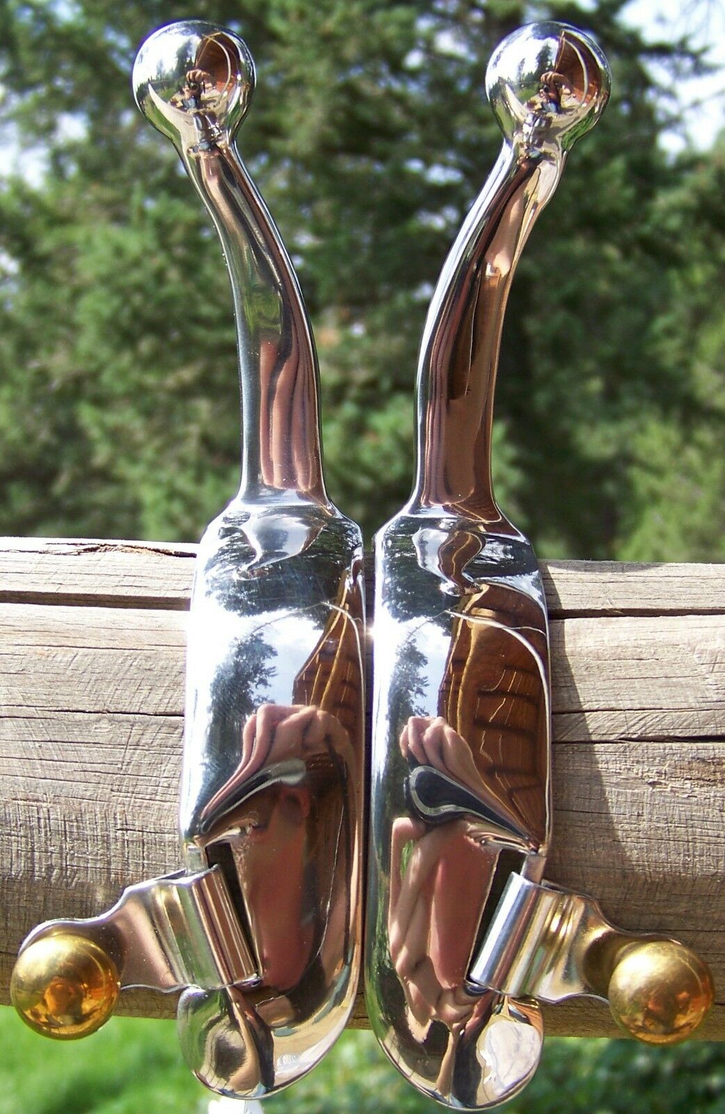 Spurs - Stainless Steel Humane (Ladies)