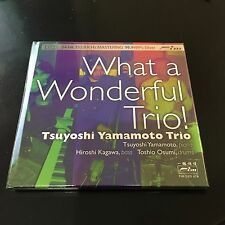 WHAT A WONDERFUL TRIO TSUYOSHI YAMAMOTO TRIO 99.99 SILVER AUDIOPHILE CD, FIM