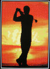GOLFER (SILHOUETTE) ~ Counted Cross Stitch KIT #K795