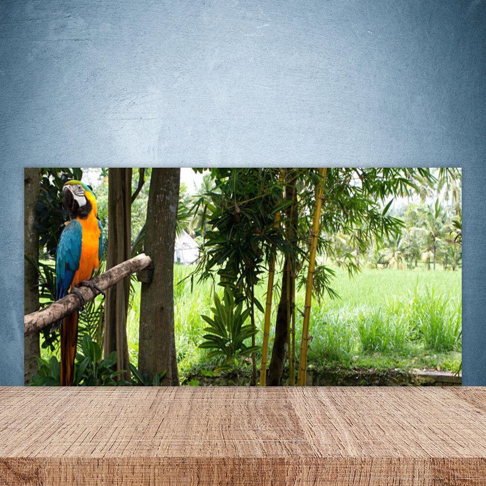 Crédence de cuisine en verre Panneau Paroi 100x50 Nature Arbres Perroquet