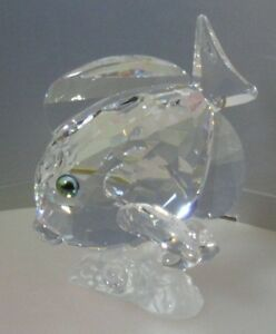 SWAROVSKI-SILVER-CRYSTAL-BLUE-TANG-FISH-CLEAR-S-C-S-883822-MINT-IN-BOX