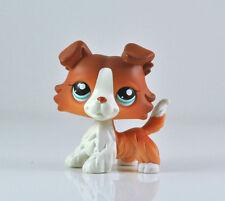 Cute Littlest Pet Shop LPS Brown White Collie Puppy Dog Blue Eyes Child  #1542