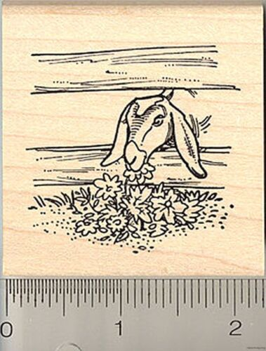 grazing Nubian goat rubber stamp H8818 wood mounted