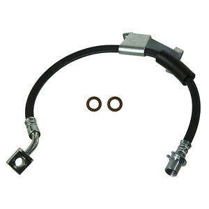 Brake Hydraulic Hose Front Left Wagner BH138924