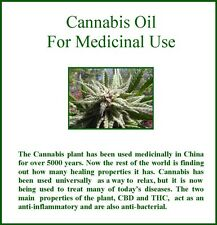 Making Cannabis Oil for Medicinal Use and other Marijuana Recipes PDF Download