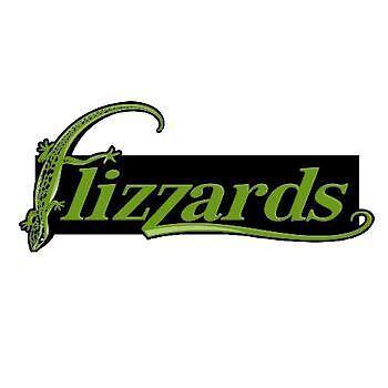 Flizzards