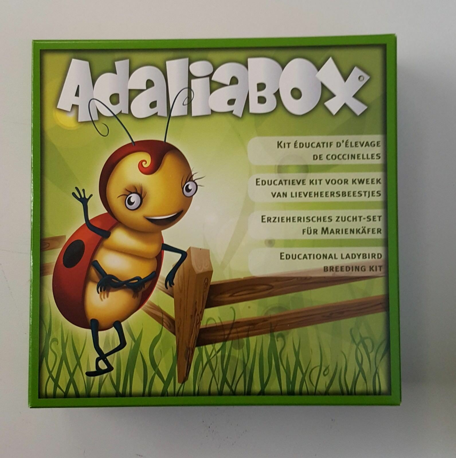 Ladybird Breeding Kit complete with VOUCHER for Ladybird larvae GIFT