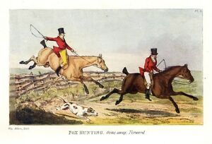 FOX HUNTING WITH HOUNDS AND WHIP, SPORTSMAN HUNTING FOX ON HORSEBACK, DOGS HUNT