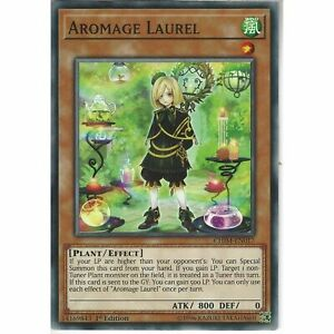 CHIM-EN017-Aromage-Laurel-1st-Edition-Common-Card-YuGiOh-TCG-Chaos-Impact