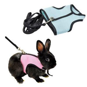 Pet-Harness-Leash-Strap-Lead-For-Hamster-Rabbit-Cobaya-Ferret-Chinchilla-Cavia