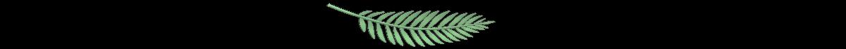 ekoteccraftsandgifts