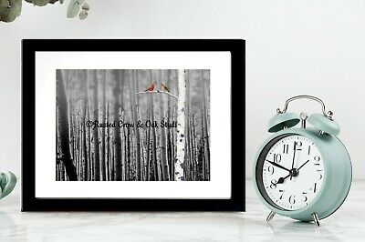 Red Bird Cardinal Tree Fog Birch Forest Black White Country Matted Picture A128