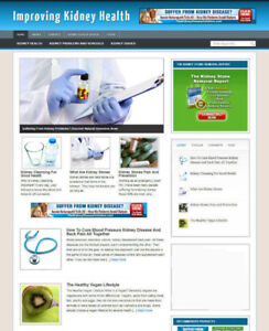 KIDNEY-HEALTH-ADVICE-BLOG-AND-WEBSITE-WITH-AFFILIATE-STORE-BANNERS-amp-DOMAIN