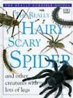 Really Hairy Scary Spider by Dorling Kindersley Ltd (Hardback, 1996)