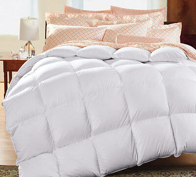 Cold Weather Comforters Collection On Ebay