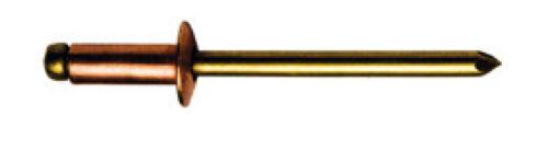 Blindnieten Dichtnieten Nieten Kupfer Bronze Flachrundkopf