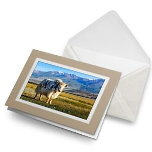 Greetings-Card-Biege-Bull-Cattle-Himalayan-Yak-Cow-16541