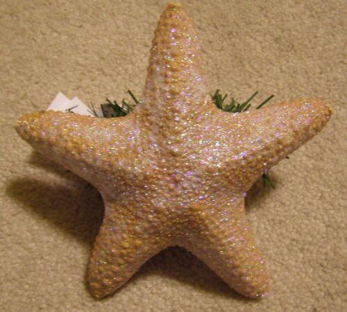 "real Christmas Tree Topper 6 to 7/"" Jungle STARFISH"