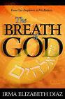 The Breath of God by Irma Diaz (Paperback, 2001)