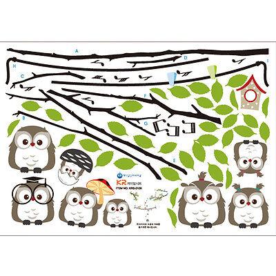 Cute~! Owl Family Tree_Removable Wall Art Decor DIY Sticker_Kids Nursery Room