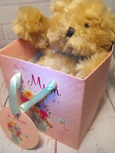 Image Is Loading MOMS BIRTHDAY GIFT TEDDY BEAR IN BOX Mums